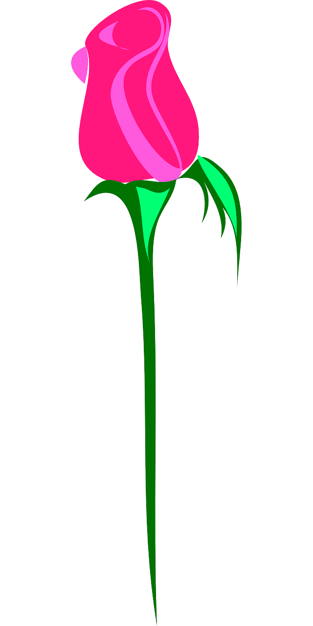 how to make a rose 15