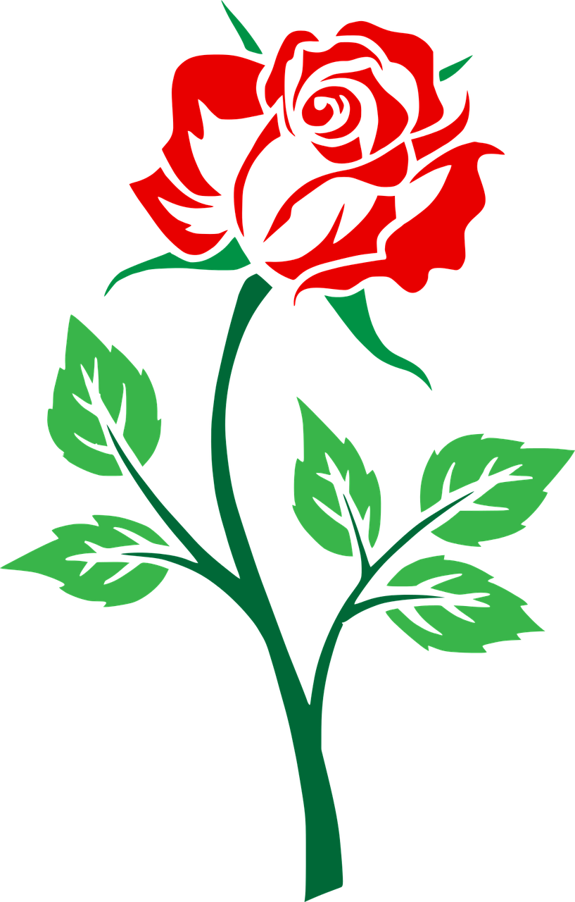 how to make a rose 5