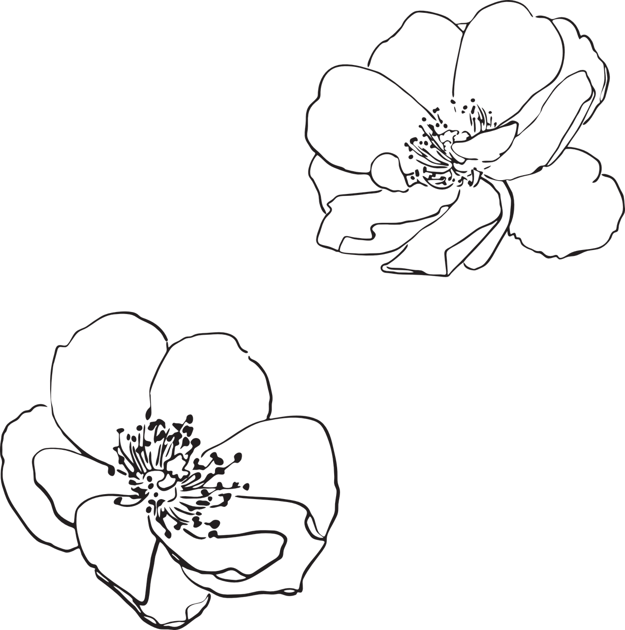 how to make a rose, stencil 9