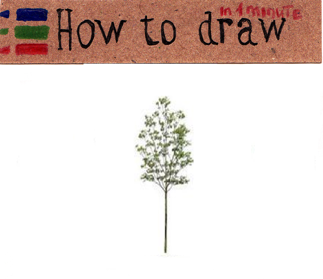 Free Vector Tree Pictures - 18 Free Pictures