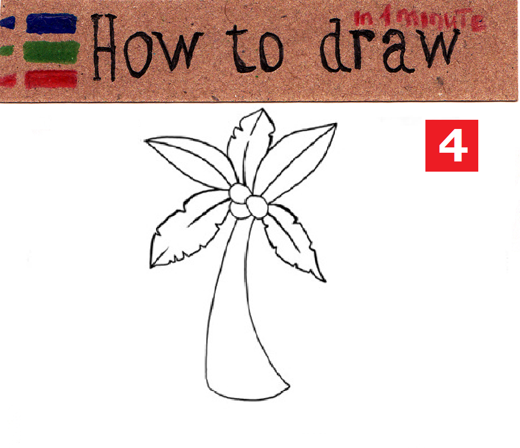 How to draw a palm tree: easy tutorial