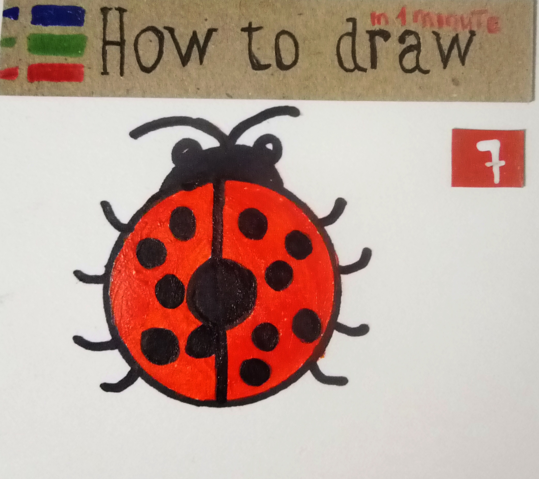 How to draw a ladybug - a simple tutorial