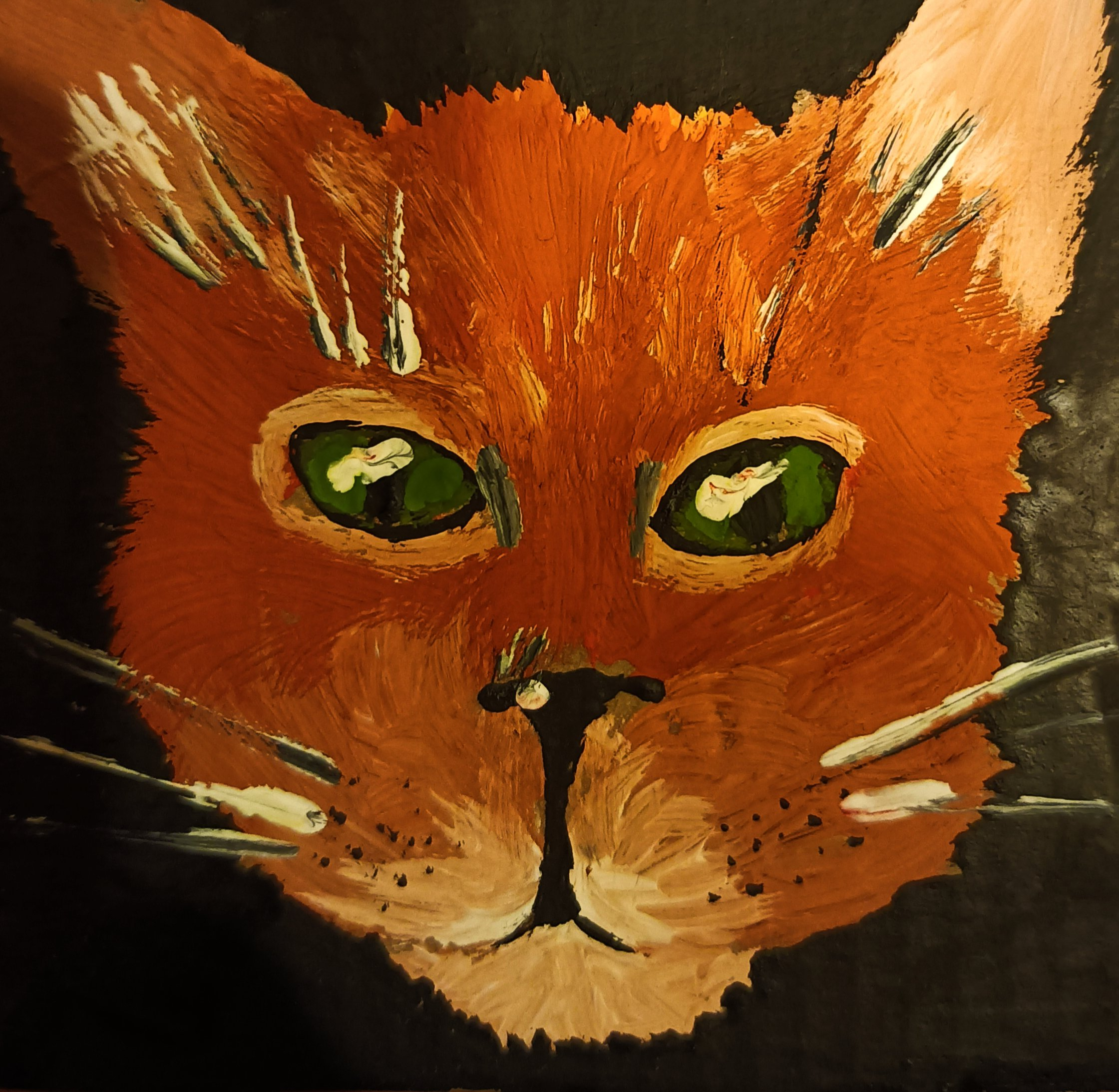 Drawings of a cat - 5 cool pictures