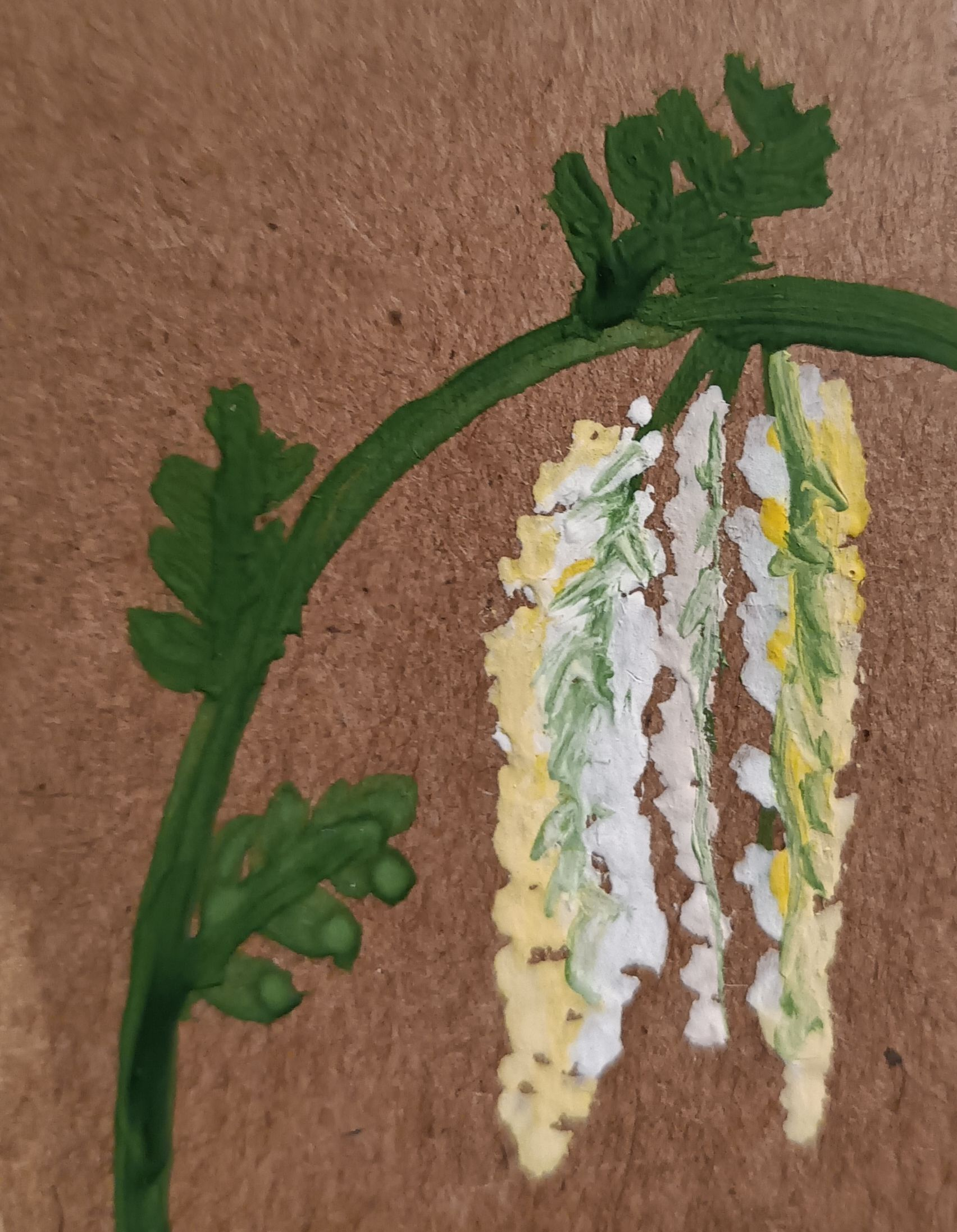 Drawings of plants - 8 best pictures