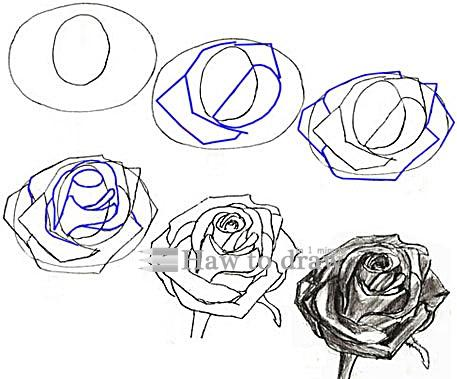 steps on how to draw a rose with a heart