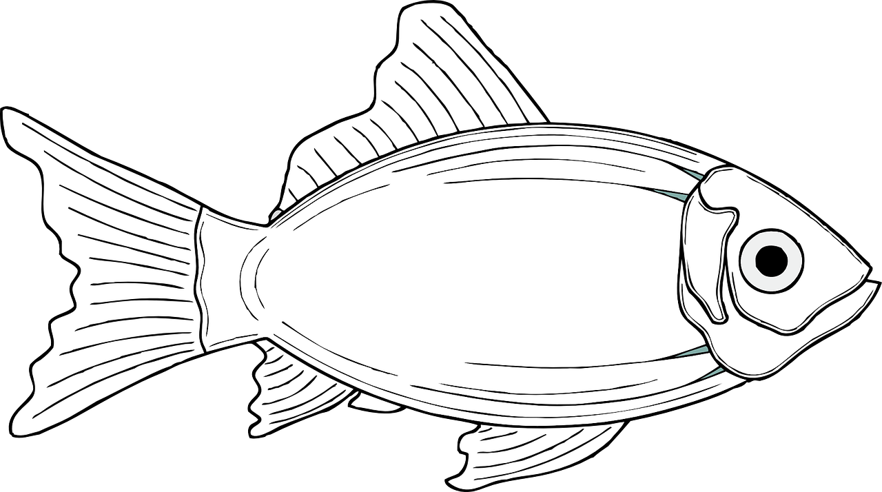 Fish coloring pages free for kids 2