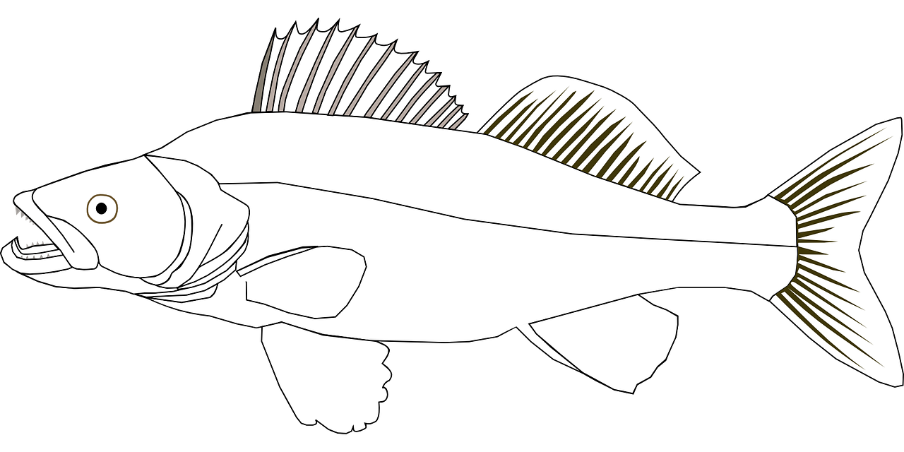 Fish coloring pages free for kids 9