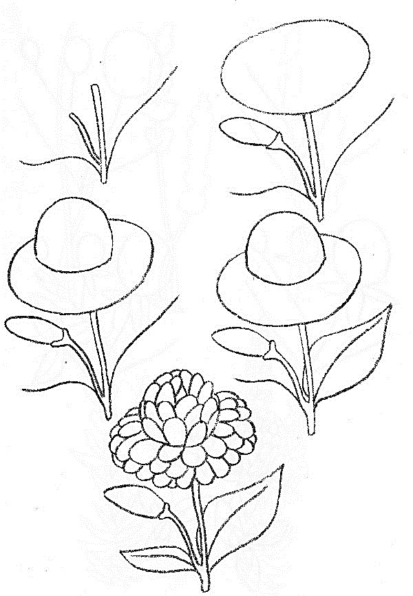 Wildflowers drawing 7