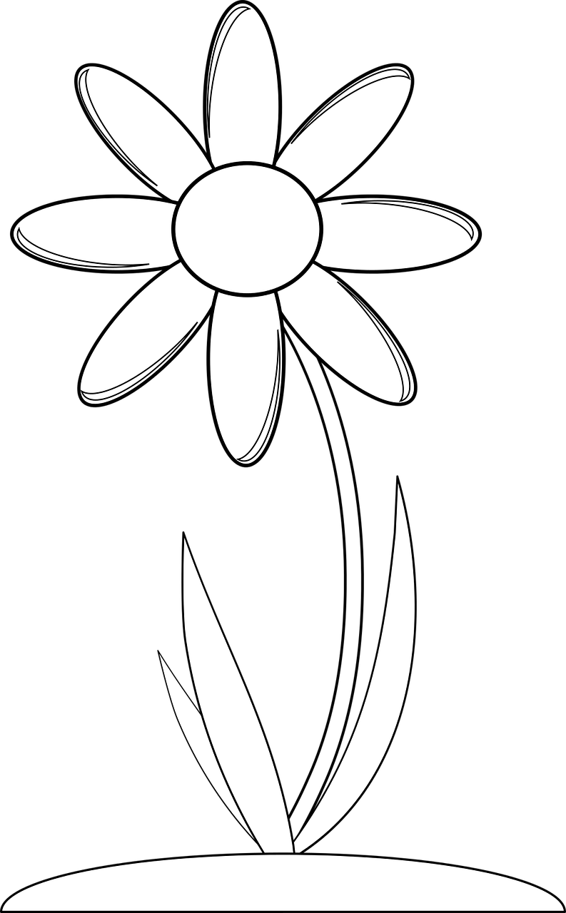 Wildflowers drawing - coloring pages free for kids