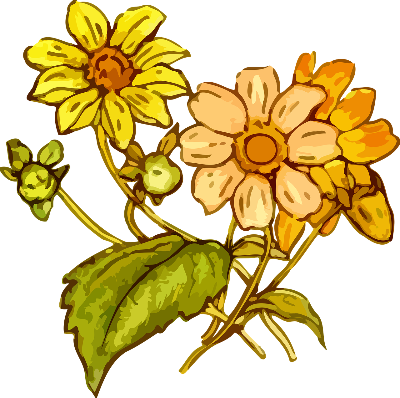 Wildflowers drawing - the best 2