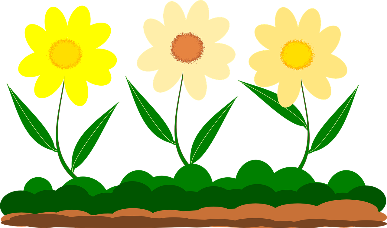 Wildflowers drawing - the best 6