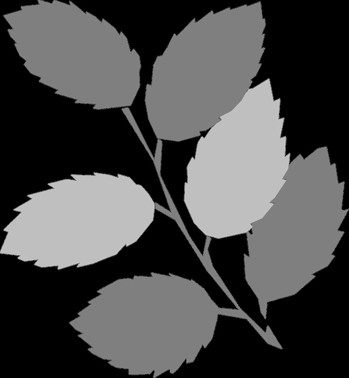 free printable leaf stencils 12