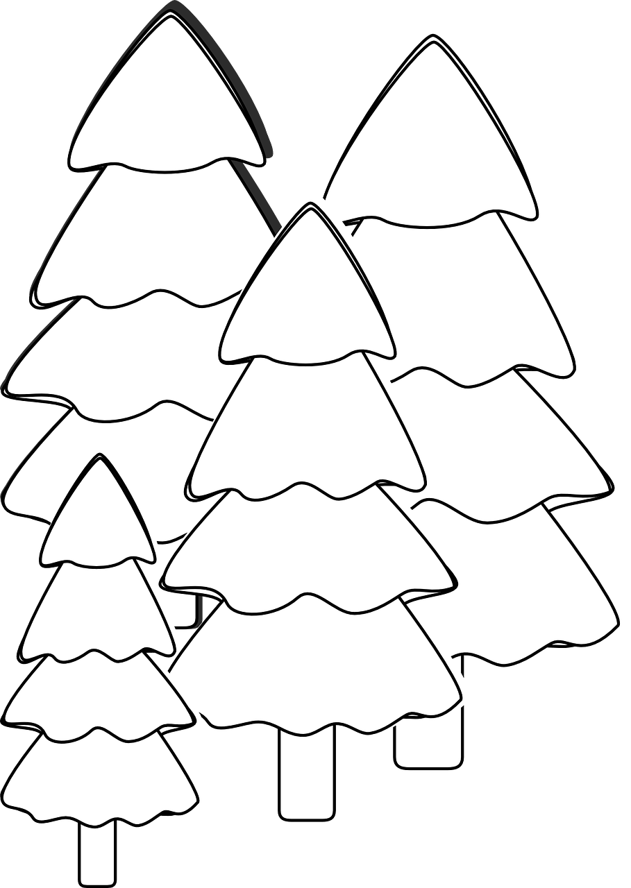 how to draw a Christmas tree, coloring 1