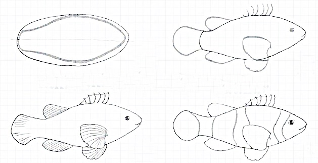 how to draw a fish 15