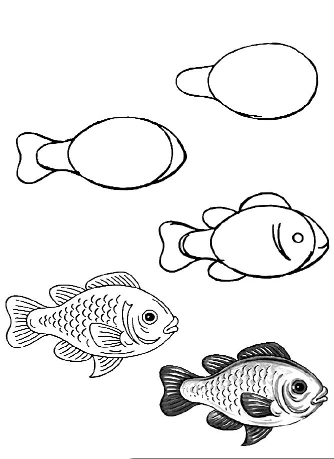 how to draw a fish 2