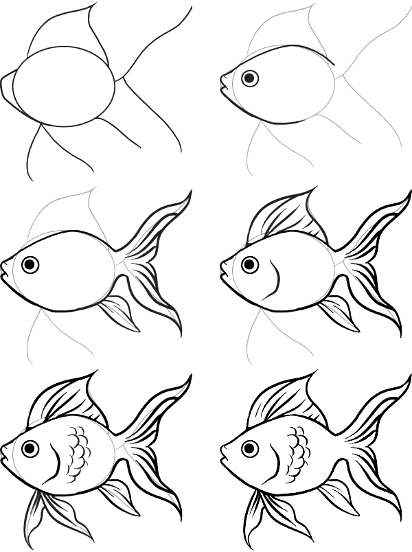 how to draw a fish 27