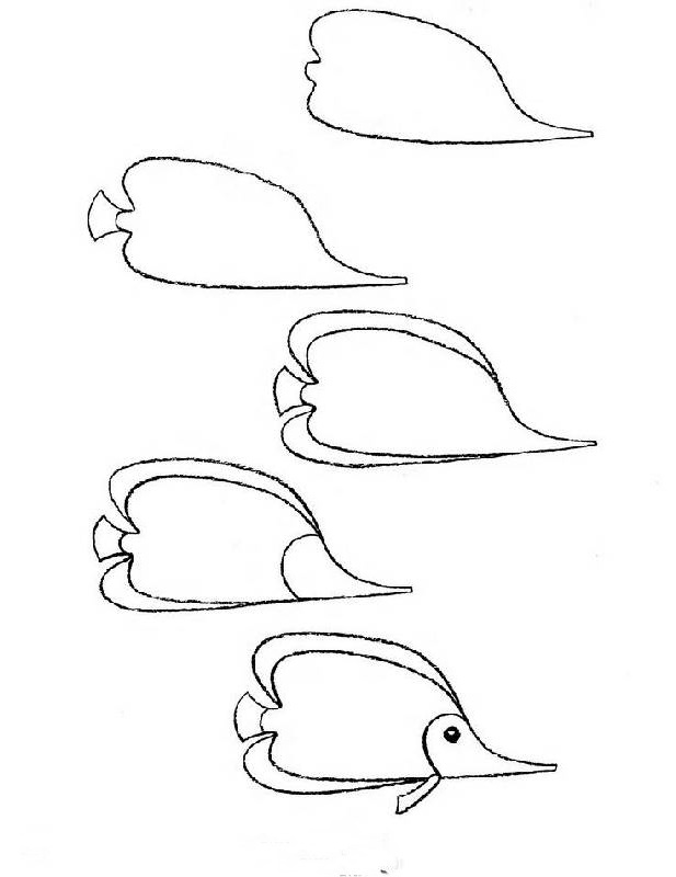 how to draw a fish 30