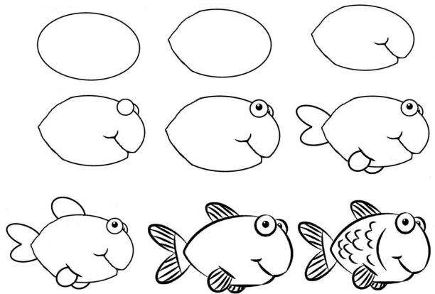 how to draw a fish 33