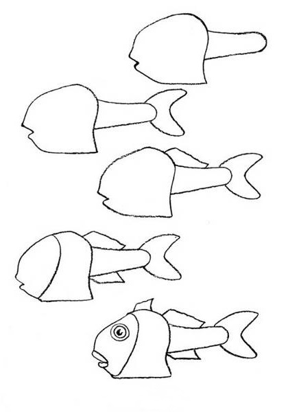 how to draw a fish 48