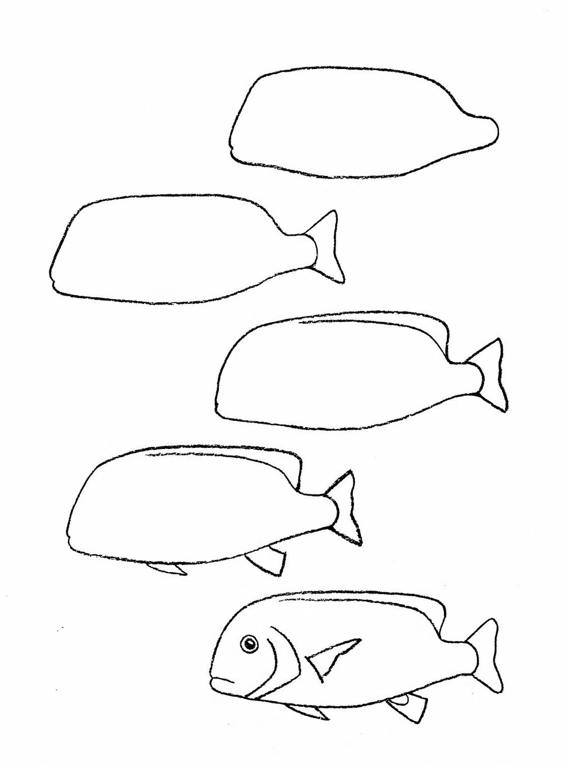 how to draw a fish 50