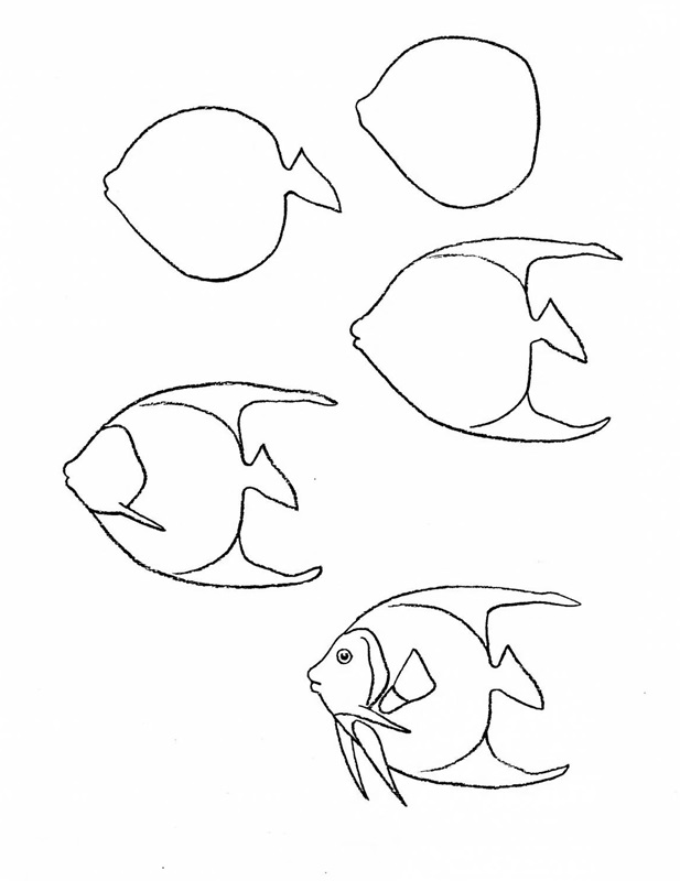 how to draw a fish 8
