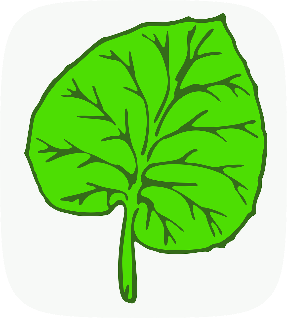 how to draw a leaf 13