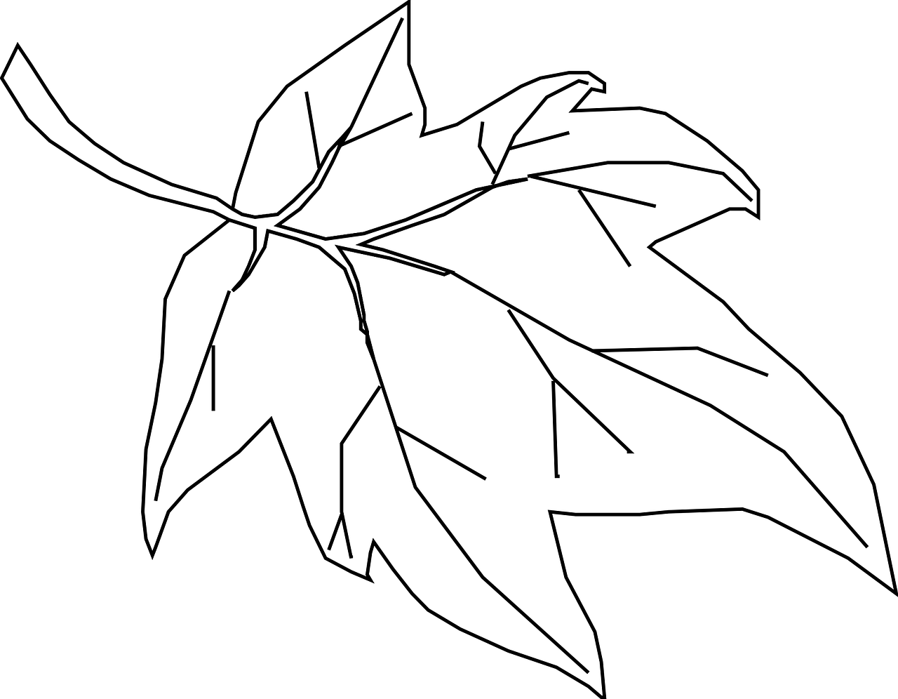 Free printable leaf coloring pages for kids: 11 pics