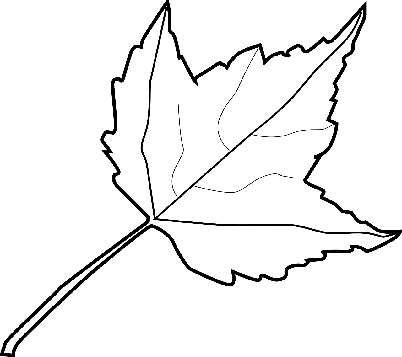 how to draw a leaf free printable leaf coloring pages 7