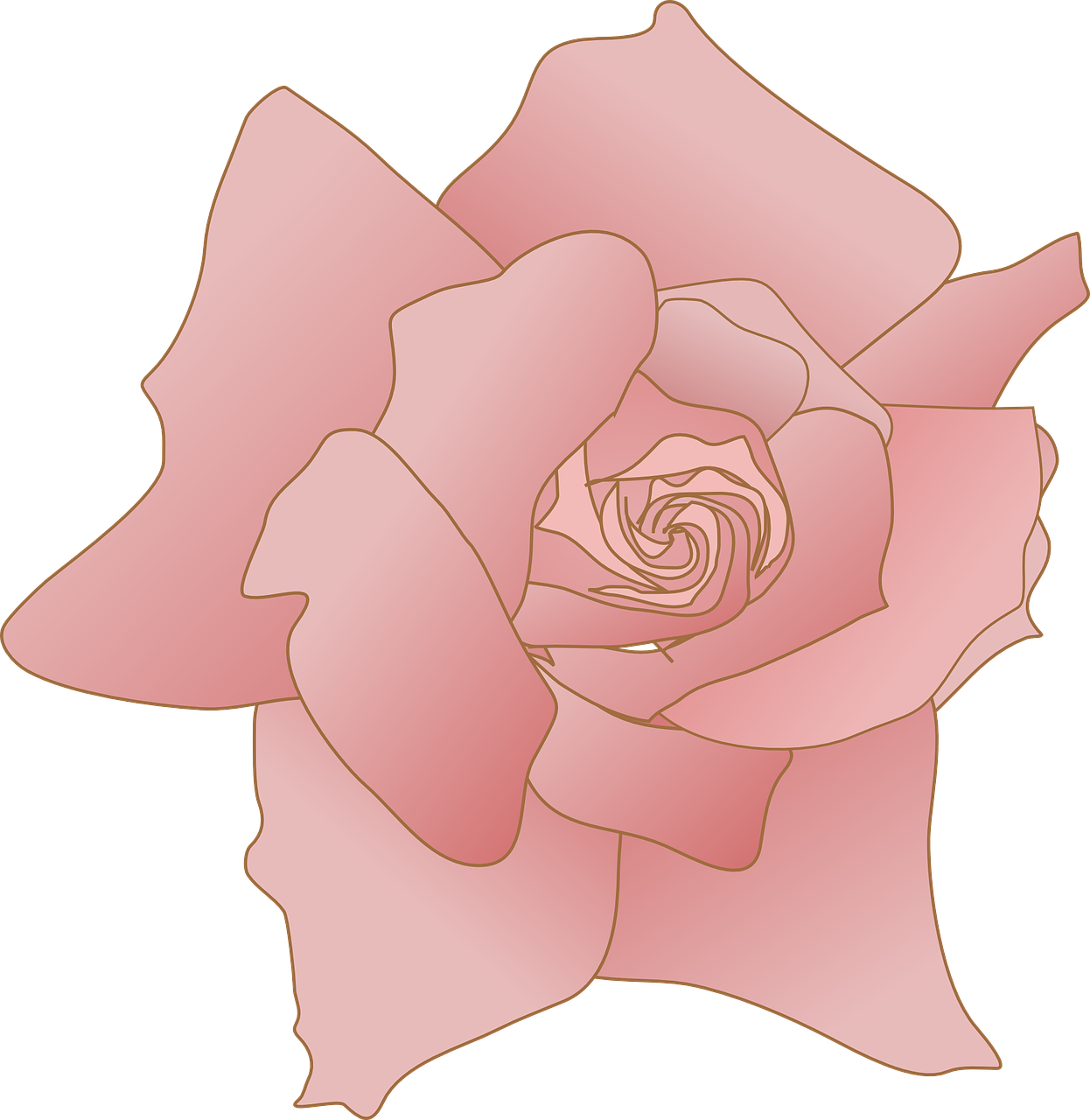 how to draw a rose 2