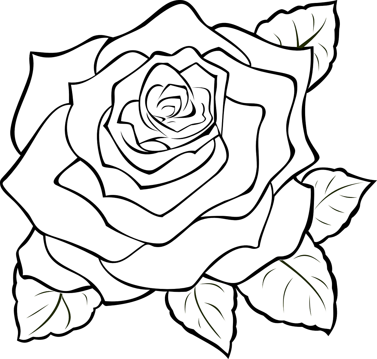 How to make drawing of rose: 14 free printable rose stencils