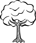 Free printable tree coloring pages for kids: 14 pics