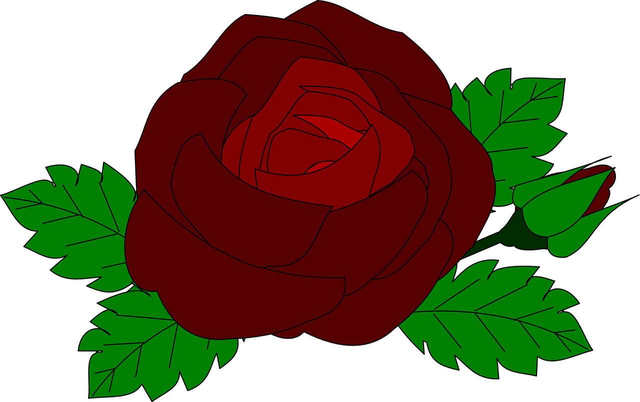how to make a rose 14