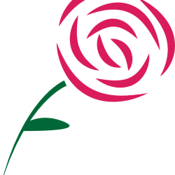 how to make a simple rose