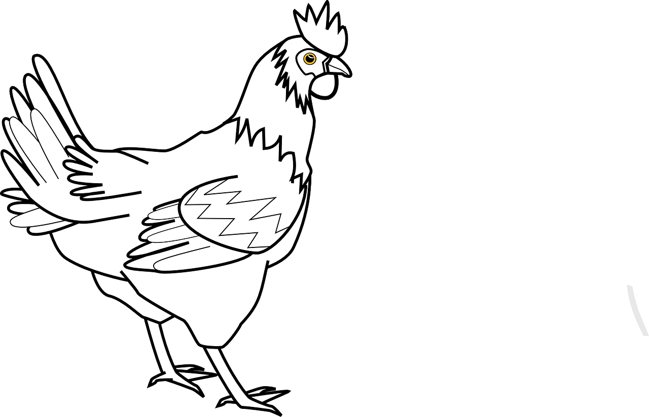How to draw a cock: free printable cock stencils 17